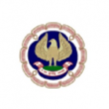 The Institte of Chartered Accountants of India (ICAI)