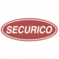 Securico Electronics India Limited