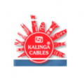 R.K. Electrical Industries (India)