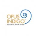 OPUS Indigo Designs Pvt. Ltd.